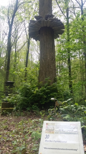 Blauwzwammolensteenboomkraag